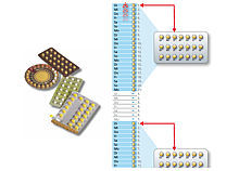 Grafik zu den Einnahmephasen der Pille