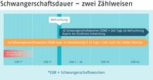 Infografik, die die beiden Zählweisen der Schwangerschaftsdauer zeigt
